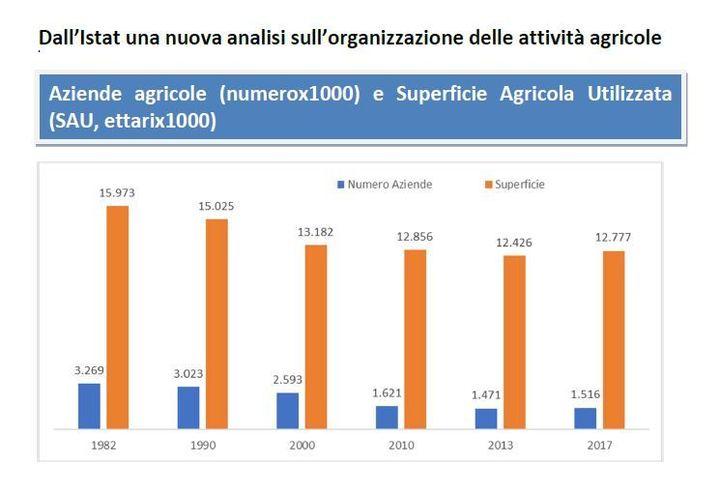 Rapporto del Centro Studi sull'organizzazione dell'attività agricola