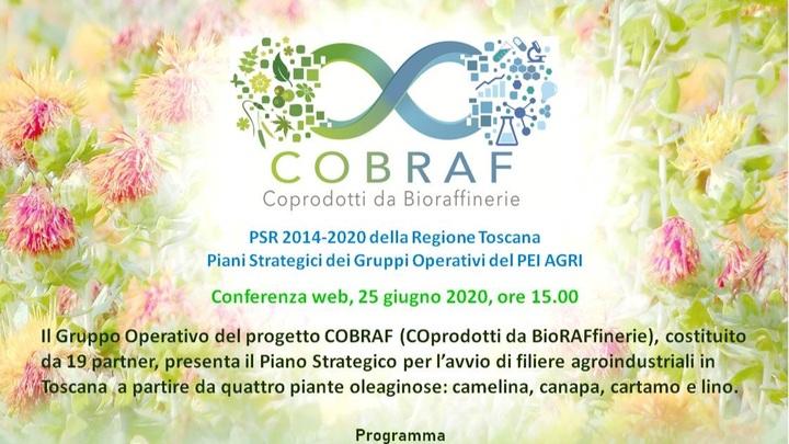 Conferenza web Progetto COBRAF, 25 giugno 2020, ore 15.00