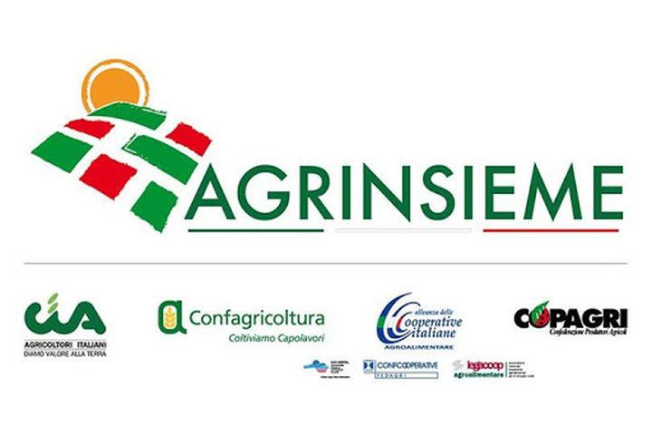 AGRINSIEME: IL COORDINAMENTO PRESENTA LE PRIORITÀ AGRICOLE AL PRESIDENTE DEL CONSIGLIO INCARICATO MARIO DRAGHI