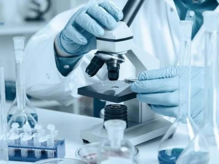 Biotecnologie, Giansanti: bene la Commissione UE. Ora avanti con istituzioni e scienza