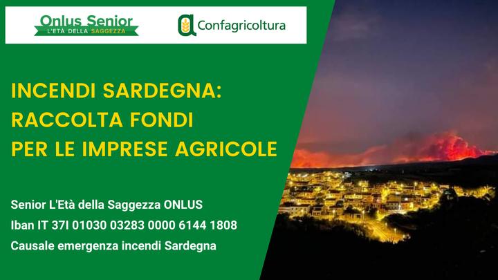 INCENDI SARDEGNA: CONFAGRICOLTURA E ONLUS SENIOR LANCIANO RACCOLTA FONDI PER LE IMPRESE AGRICOLE