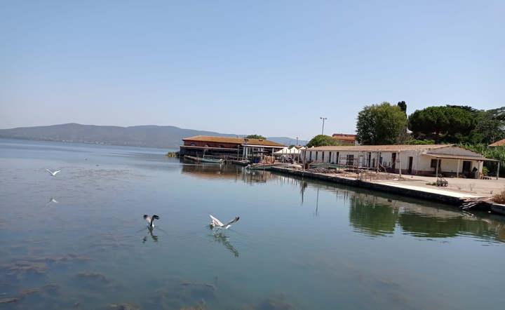 Pesca, lavori in corso per liberare la laguna di Orbetello dalle alghe