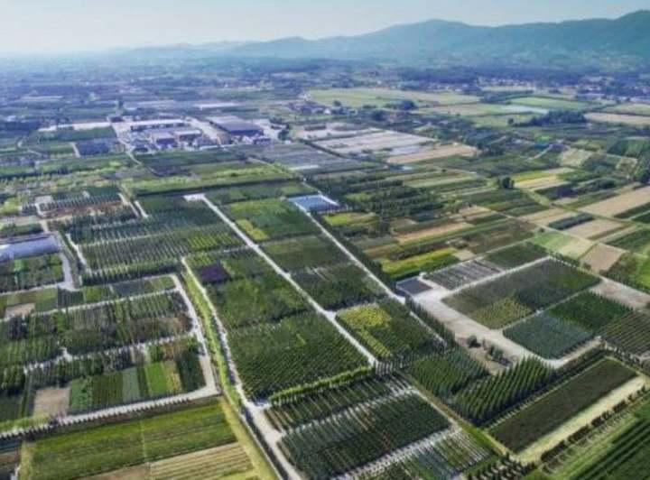 IL PRESIDENTE GIANSANTI A PISTOIA INCONTRA AGRICOLTORI E VIVAISTI DELLA PROVINCIA