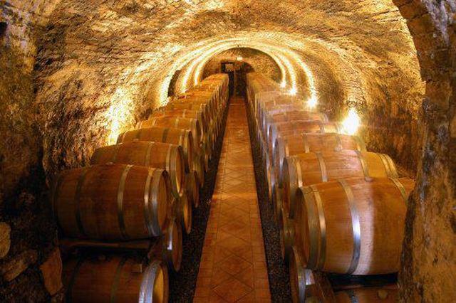 Testo unico del Vino: organizzazioni della filiera soddisfatte dopo l'ok della Camera