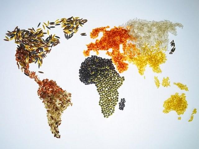 In Italia il primo Global Food Forum, organizzato da Farm Europe in collaborazione con Confagricoltura