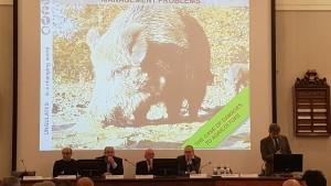 Ungulati: le conclusioni del convegno a Siena con l'intervento del direttore generale di Confagricoltura Mastrobuono