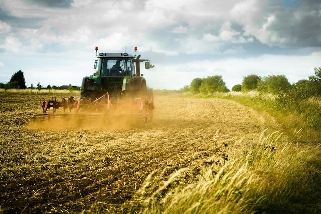 Prime stime sull'andamento dell'economia agraria nel 2017