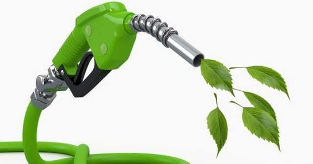 """Biometano, Giansanti (Confagricoltura): """"Le dichiarazioni del sottosegretario Gava vanno nella direzione dello sviluppo della filiera agricola del biometano"""""""