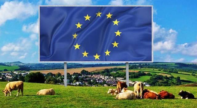 Giansanti (Confagricoltura) a Bruxelles sulle priorità europee per agricoltura, commercio e innovazione