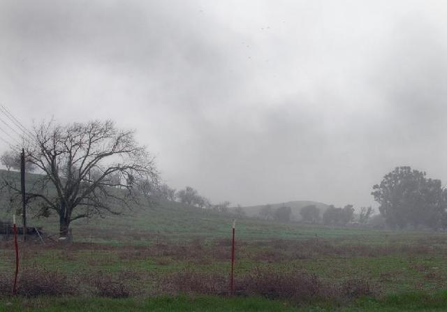 Maltempo, Confagricoltura: Saltano le semine. Non unire ai danni meteorologici quelli della burocrazia