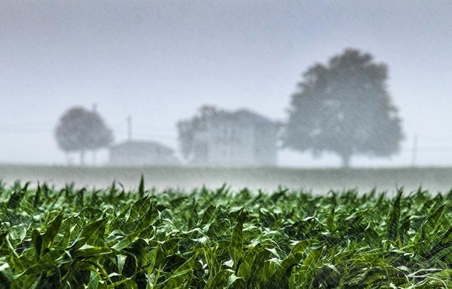Maltempo, Confagricoltura: Urgente un piano di gestione del territorio con agricoltura al centro