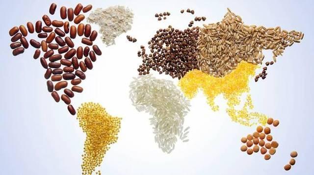 GIORNATA MONDIALE ALIMENTAZIONE, CONFAGRICOLTURA: UN'AGRICOLTURA FORTE PER IL RISCATTO DEI POPOLI