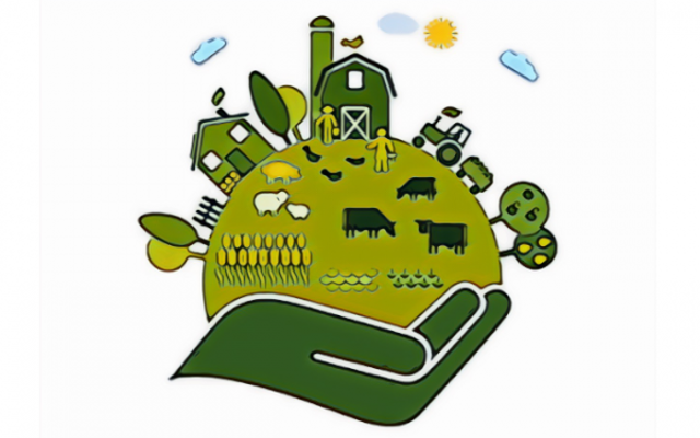 GIANSANTI (CONFAGRICOLTURA): PAC PIU' AMBIZIOSA PER L'AMBIENTE, MA ANCHE PER UN'AGRICOLTURA STRATEGICA SUI MERCATI INTERNI E MONDIALI