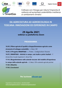 Progetto Smartgas Webinar 29 Aprile