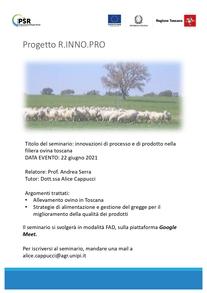 Innovazioni di processo e di prodotto nella filiera ovina toscana