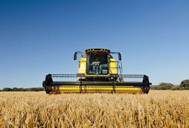 Confagricoltura, trebbiatura 2021: meno grano ma di alta qualità, a tutto vantaggio della filiera della pasta totalmente made in Italy