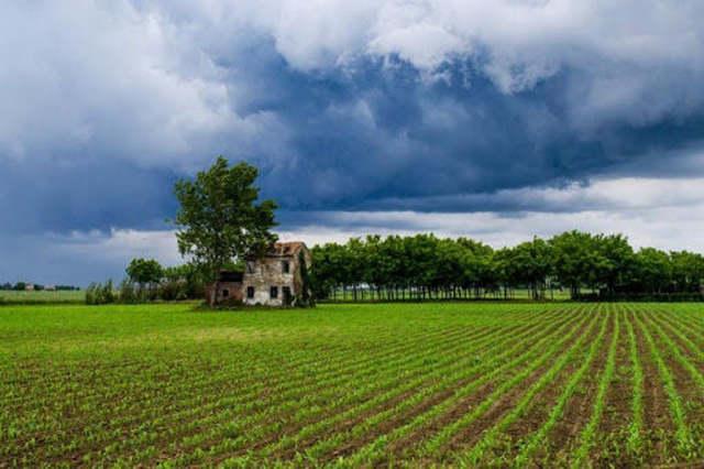 FERTILIZZANTI, CONFAGRICOLTURA: SERVE INIZIATIVA EUROPEA PER EVITARE ULTERIORE AUMENTO DEI PREZZI ED EVITARE CROLLO DELLE PRODUZIONI AGRICOLE