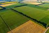 AGRONETWORK E CONFAGRICOLTURA INSIEME CON BNL GRUPPO BNP PARIBAS NEL WEBINAR«MODELLI E SERVIZI DEDICATI ALLE IMPRESE AGROALIMENTARI»